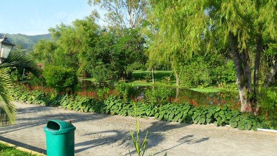 Todo local é cercado por vegetação
