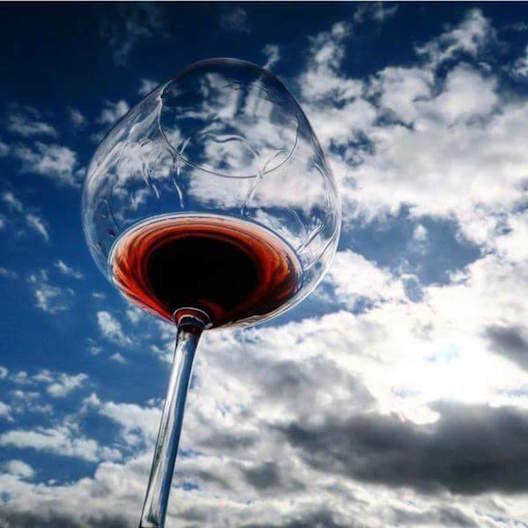 vinho marcia