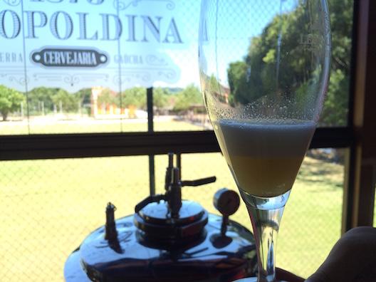 Jardim Leopoldina e cerveja - 176