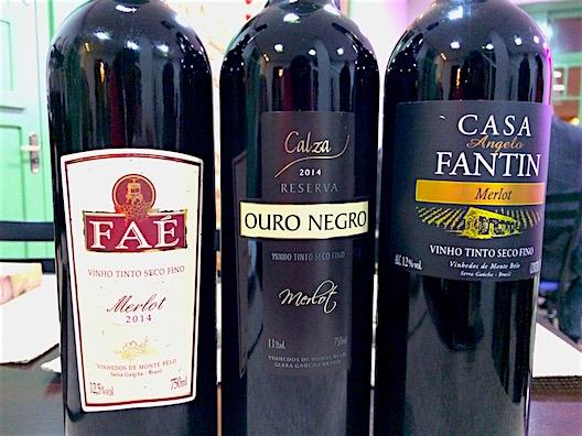 Monte Belo do Sul vinho - 8