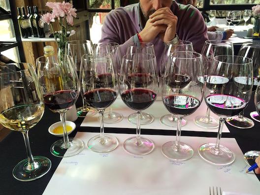 Meu parceiro de empreitada, o jornalista mendocino Esteban Dacuña, não sabia por onde começar a degustação. Provamos TODOS os vinhos