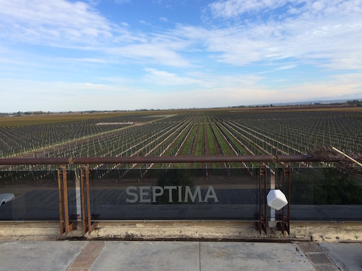 Mendoza bodega Septima - 12